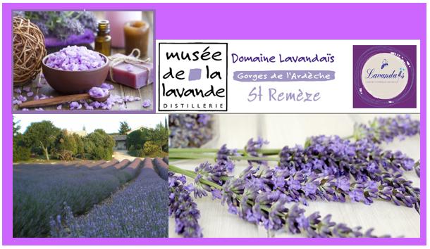 Lavendel museum